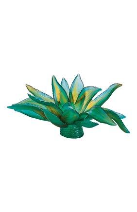 Мужского блюдо agave DAUM зеленого цвета, арт. 05664 | Фото 1