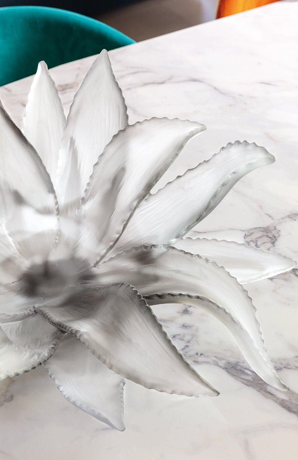 Мужского блюдо agave DAUM серого цвета, арт. 05664-1 | Фото 2