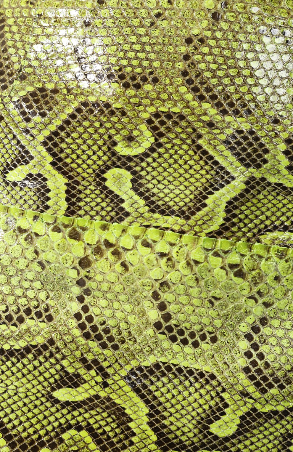 Женская юбка из кожи питона DOLCE & GABBANA зеленого цвета, арт. F4BWCL/HULI2/PBIV | Фото 5