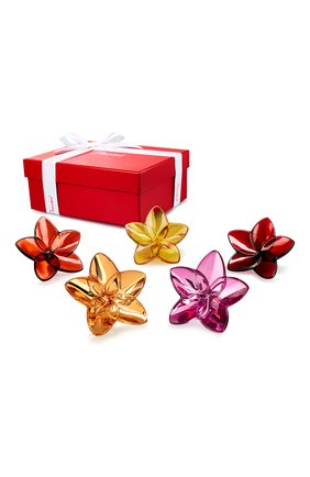 Мужская набор из 5-ти цветков BACCARAT разноцветного цвета, арт. 2 813 032 | Фото 1
