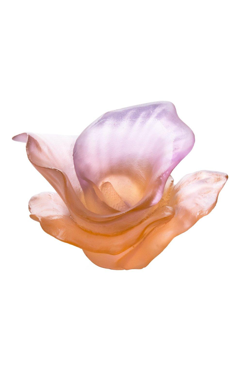 Мужского цветок arum DAUM розового цвета, арт. 05651-1   Фото 1