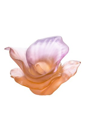 Цветок Arum | Фото №1