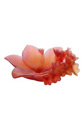 Мужского ваза для фруктов safran DAUM красного цвета, арт. 05611 | Фото 1