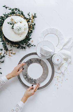 Тарелка суповая silva  BERNARDAUD серебряного цвета, арт. 1853/21896 | Фото 2 (Ограничения доставки: fragile-2)
