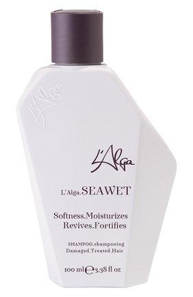 Оздоравливающий шампунь seawet L'ALGA бесцветного цвета, арт. 5060558800014 | Фото 1