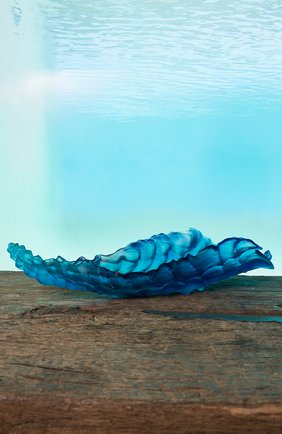 Блюдо на центр стола coral sea DAUM синего цвета, арт. 05709 | Фото 2