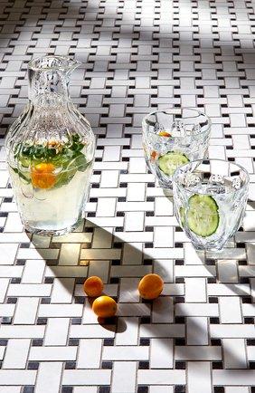 Набор из двух стаканов для виски Faunacrystopolis | Фото №2