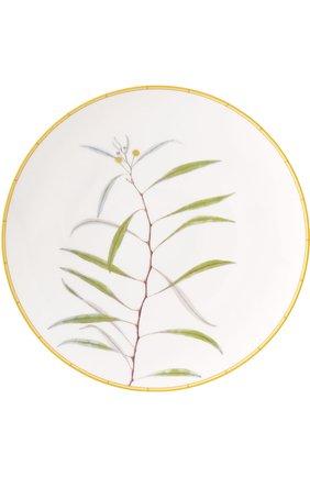 Тарелка обеденная Jardin Indien | Фото №1