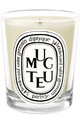 Мужская свеча muguet DIPTYQUE бесцветного цвета, арт. 3700431400369 | Фото 1