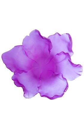 Мужского ваза для фруктов средняя DAUM фиолетового цвета, арт. 03579-2 | Фото 2