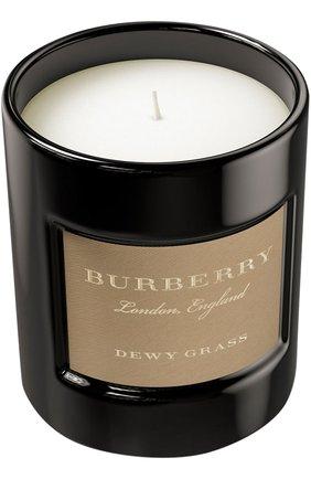 Свеча ароматизированная Dewy Grass | Фото №1