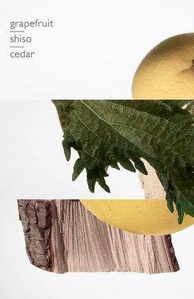 Мужской духи terre d'hermès (75ml) HERMÈS бесцветного цвета, арт. 24578H   Фото 5 (Статус проверки: Проверена категория; Ограничения доставки: flammable)
