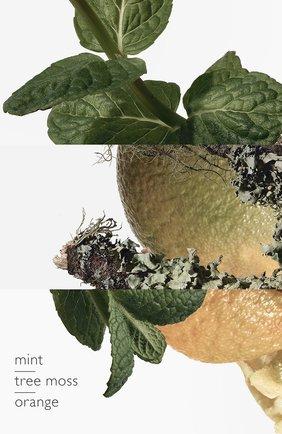 Мужской одеколон eau d'orange verte HERMÈS бесцветного цвета, арт. 38302H | Фото 4