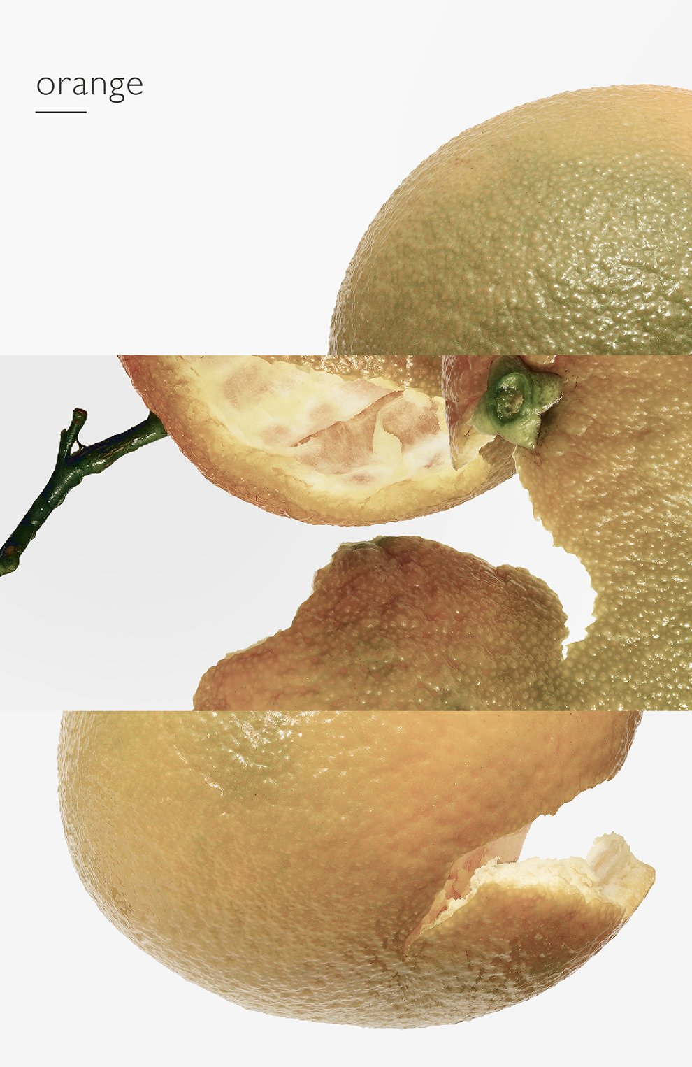 Мужской одеколон eau d'orange verte HERMÈS бесцветного цвета, арт. 38302H | Фото 7