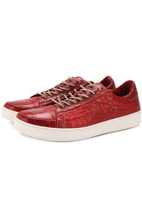 Кеды из кожи крокодила на шнуровке Dami красные | Фото №1