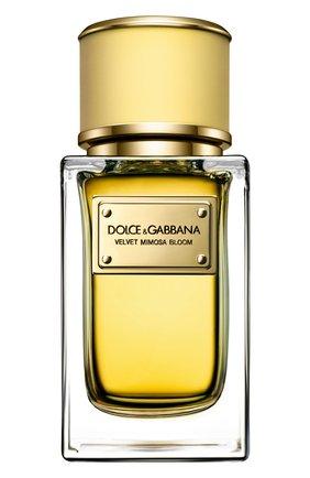 Женский парфюмерная вода velvet collection mimosa bloom DOLCE & GABBANA бесцветного цвета, арт. 3026505DG | Фото 1