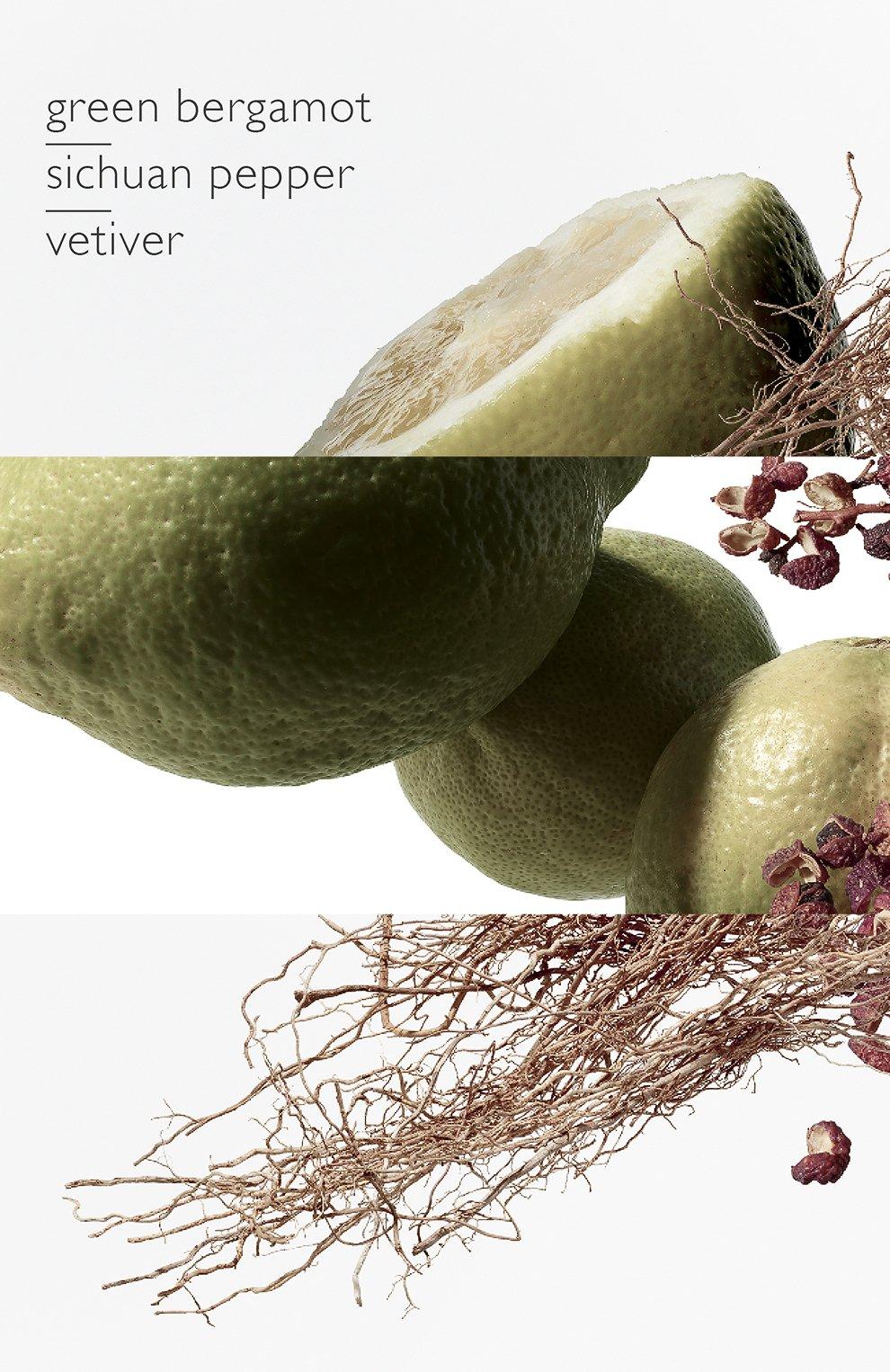 Мужской парфюмерная вода terre d'hermès eau intense vétiver HERMÈS бесцветного цвета, арт. 40945H | Фото 4