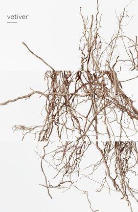 Мужской парфюмерная вода terre d'hermès eau intense vétiver HERMÈS бесцветного цвета, арт. 40945H | Фото 7