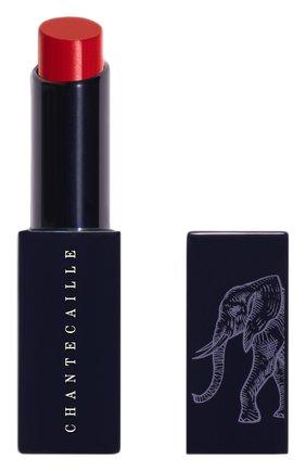Губная помада Lip Veil, оттенок Protea | Фото №1