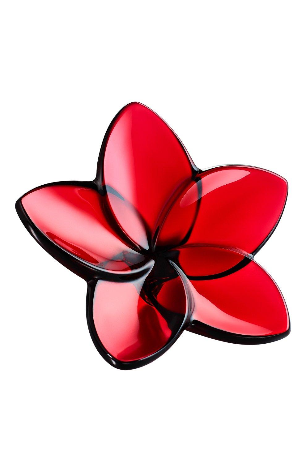 Мужского цветок BACCARAT красного цвета, арт. 2 813 016 | Фото 1
